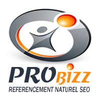 PROBIZZ-REFERENCEMENT-SEO